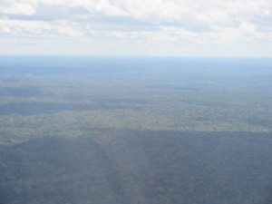 Descent into Manaus - Rain forest for days...